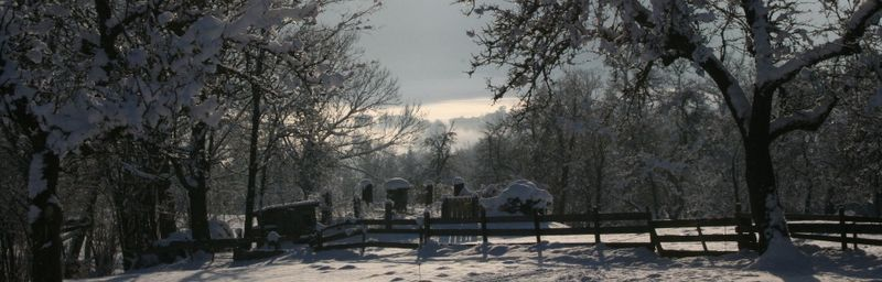 header_Winter_Sappl Hannes_1000x320.jpg